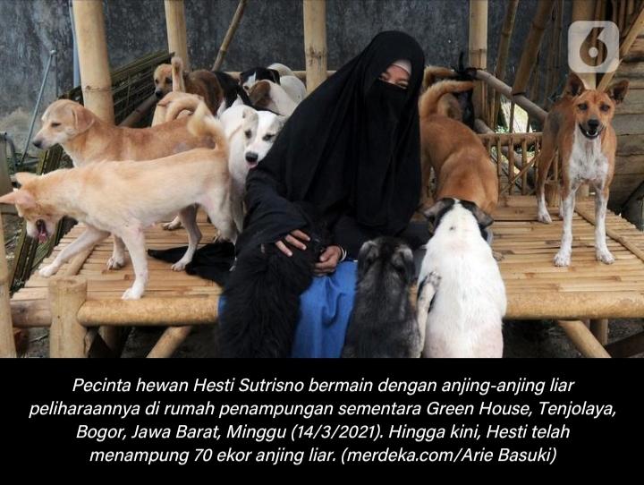 Kisah Hesty Sutrisno: Perempuan Bercadar yang Memelihara 70 Ekor Anjing